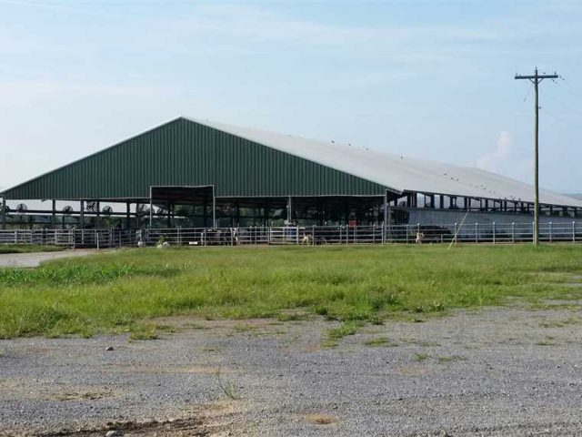 Custom Designed Industrial Steel Building